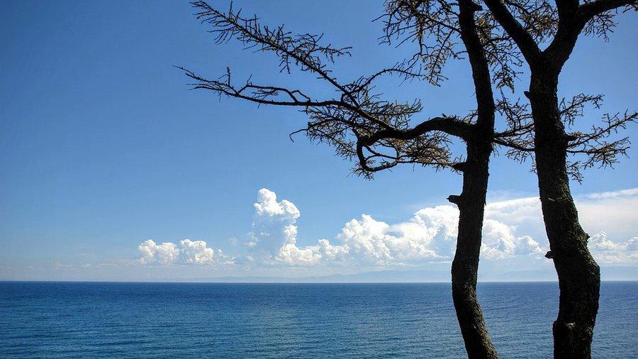 Находка на дне Байкала тревожит ученых