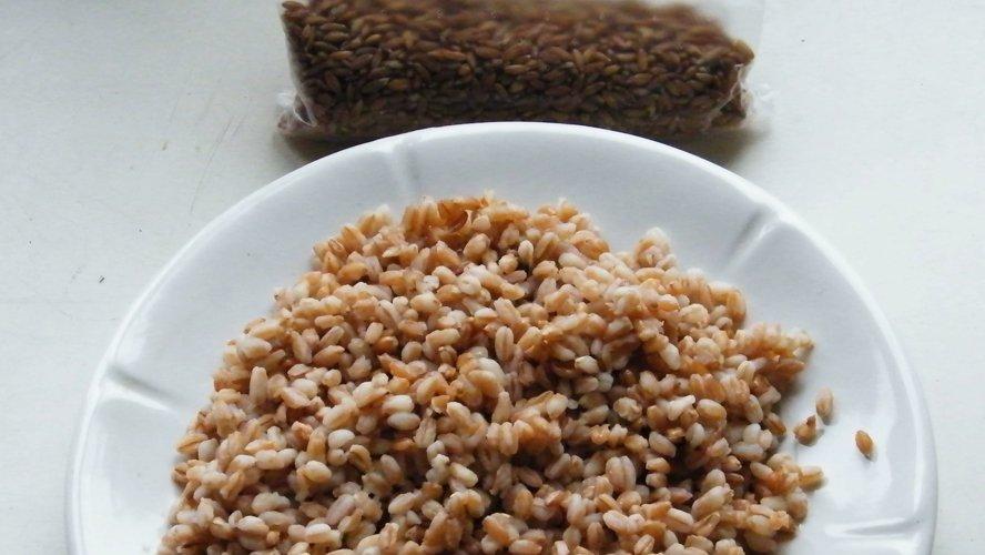 Великий пост: Рецепт полбяной каши с черными лисичками и грибным отваром