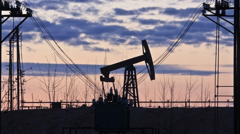 России предсказали бензиновый голод