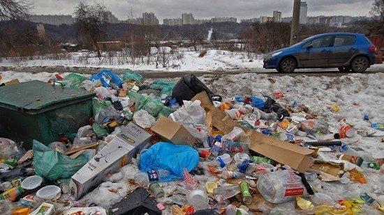 Медведев уволил из Минприроды куратора мусорной реформы