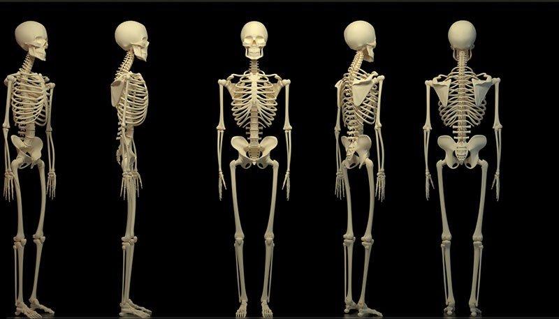 Сидящий надиване скелет обнаружили взаброшенном доме