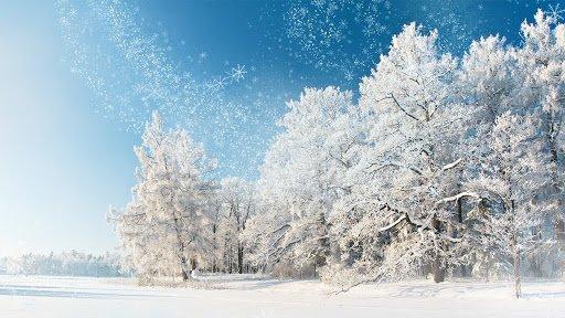 Какой праздник 27 января?