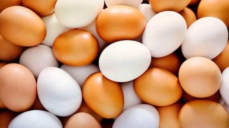 Ученые рассказали, сколько яиц можно съедать без вреда здоровью